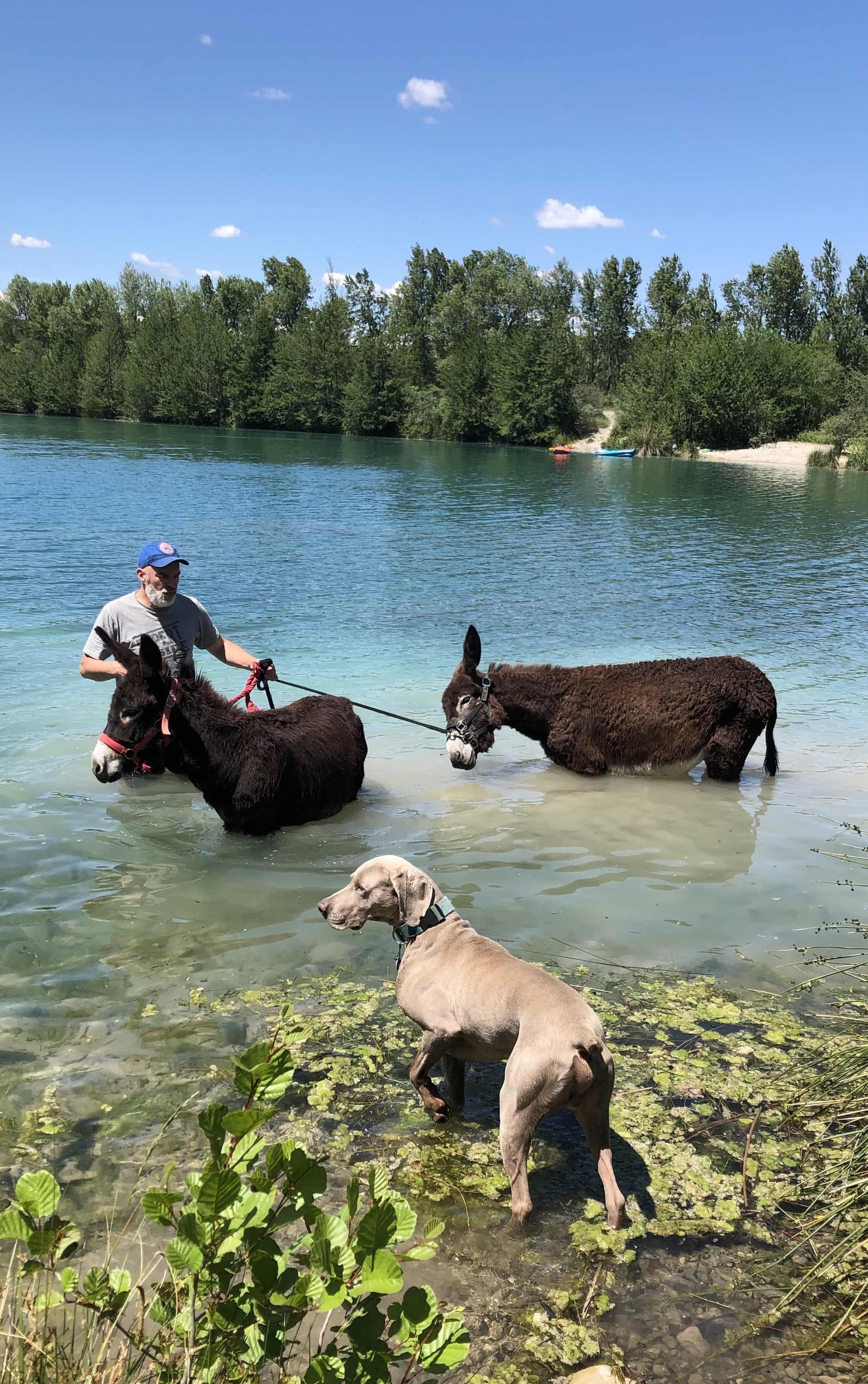 Baignade au Lac des Freydières 2