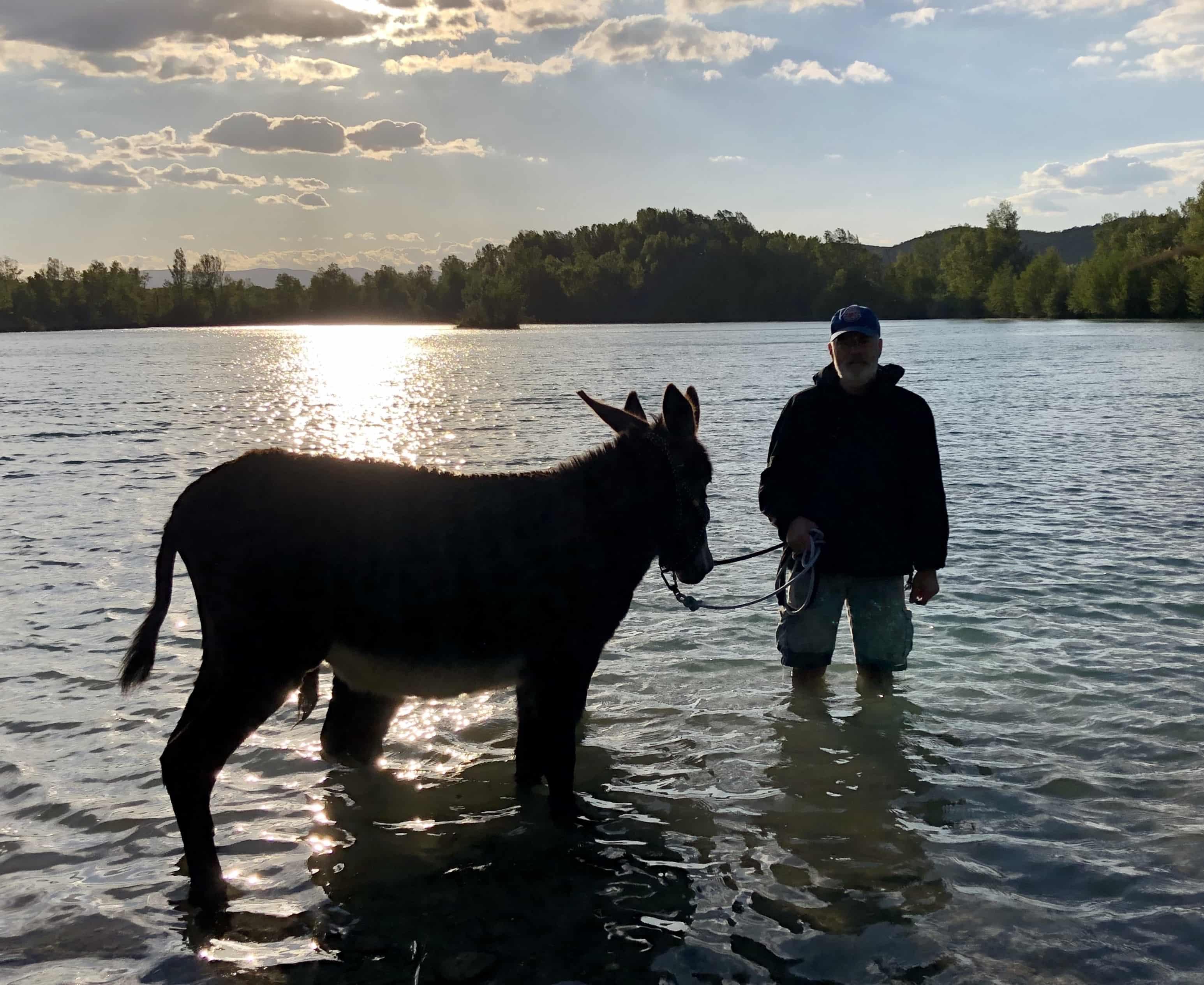 Baignade au lac des Freydieres
